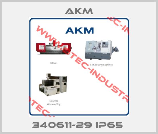 340611-29 IP65 -big