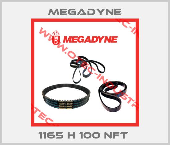 1165 H 100 NFT -big