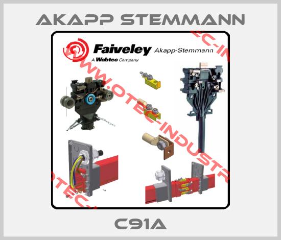 C91A (1410521)-big