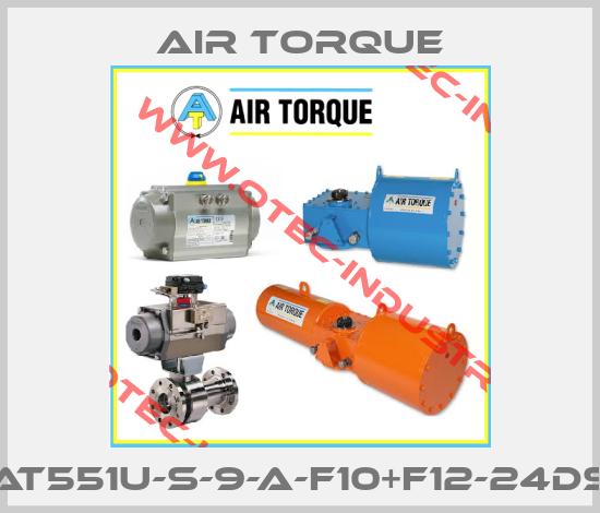 AT551U-S-9-A-F10+F12-24DS-big